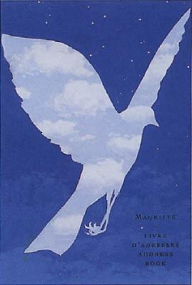 20070315013051-pajaro-nube.jpg
