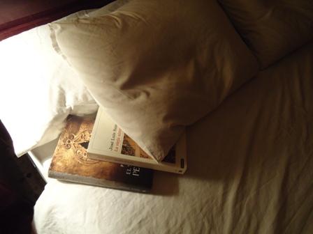 20110930224226-libro-entre-sabanas.jpg